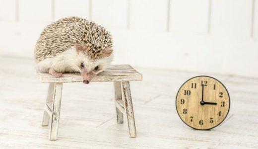 この日に届けて!LOWYA(ロウヤ)日時指定と時間帯指定の方法、指定できる期間は?